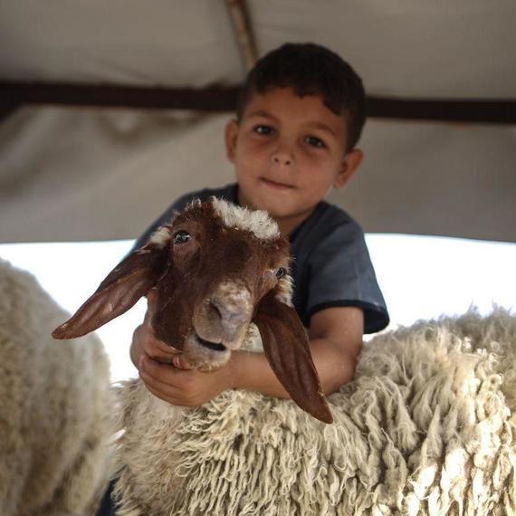 GAZA CAISSE SACRIFICE AÏD AL KEBIR